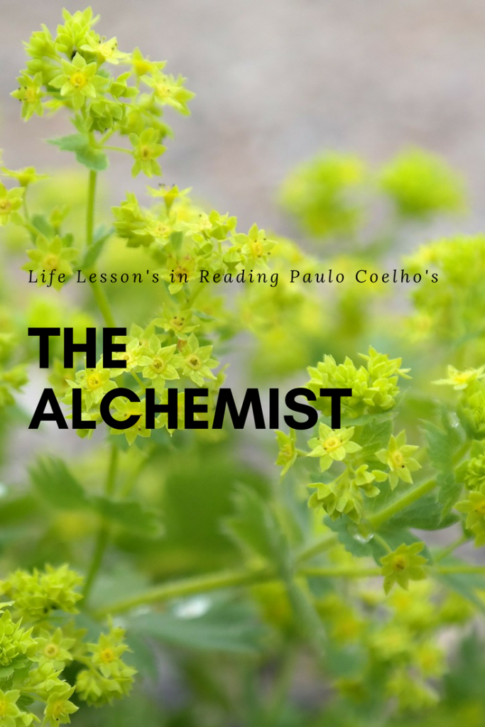 Life lesson in reading paulo coelho the alchemist
