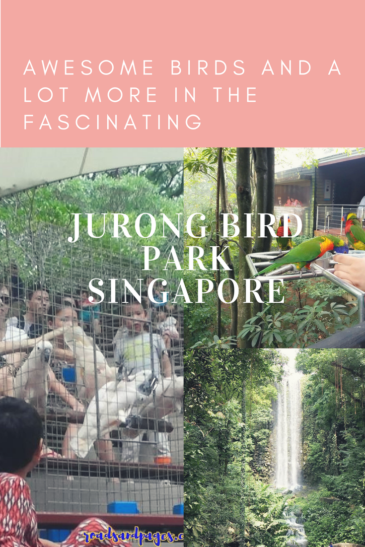 Awesome Birds and lot more in the Fascinating Jurong Bird Park